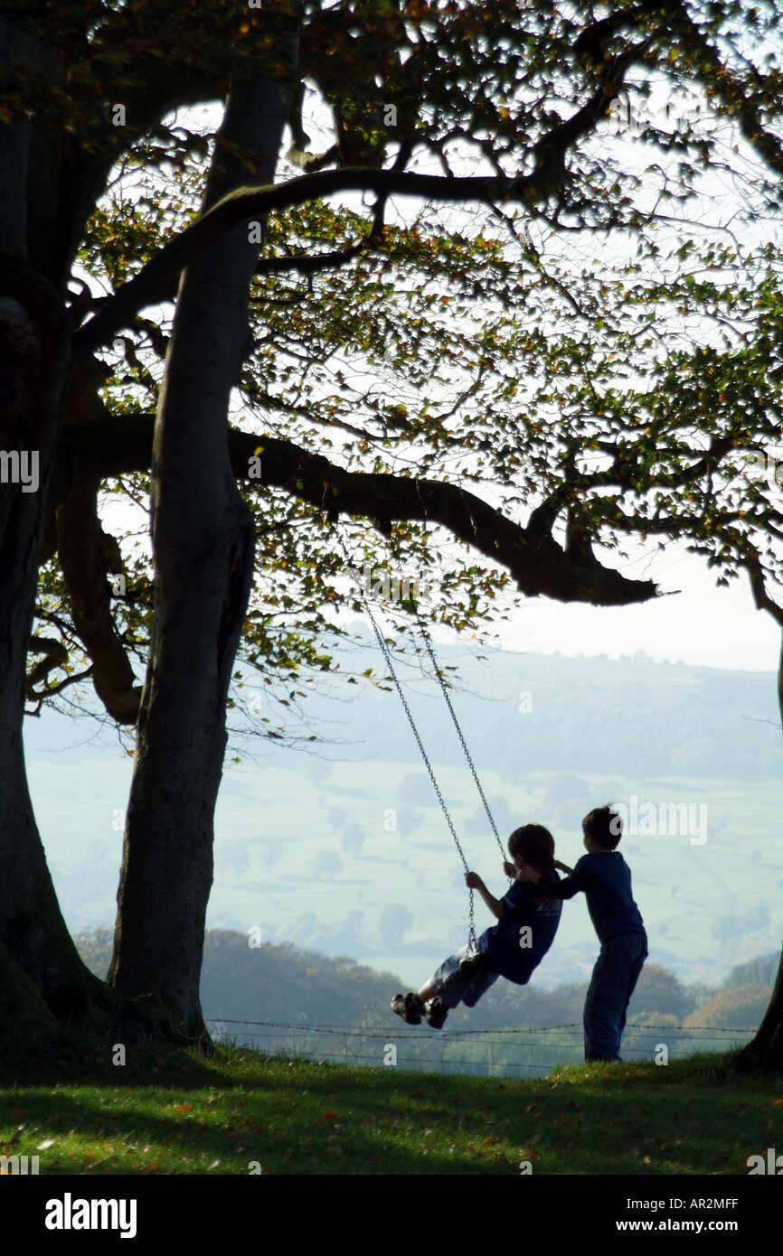 Kinder Spielen Auf Einer Schaukel Hing An Einem Baum Zweig Englische