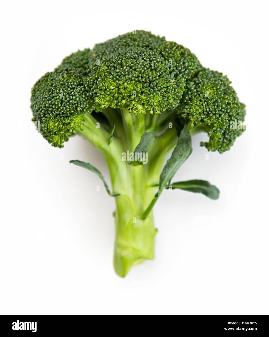 Brokkoli-Schuss auf einem weißen Hintergrund ausschneiden Stockbild