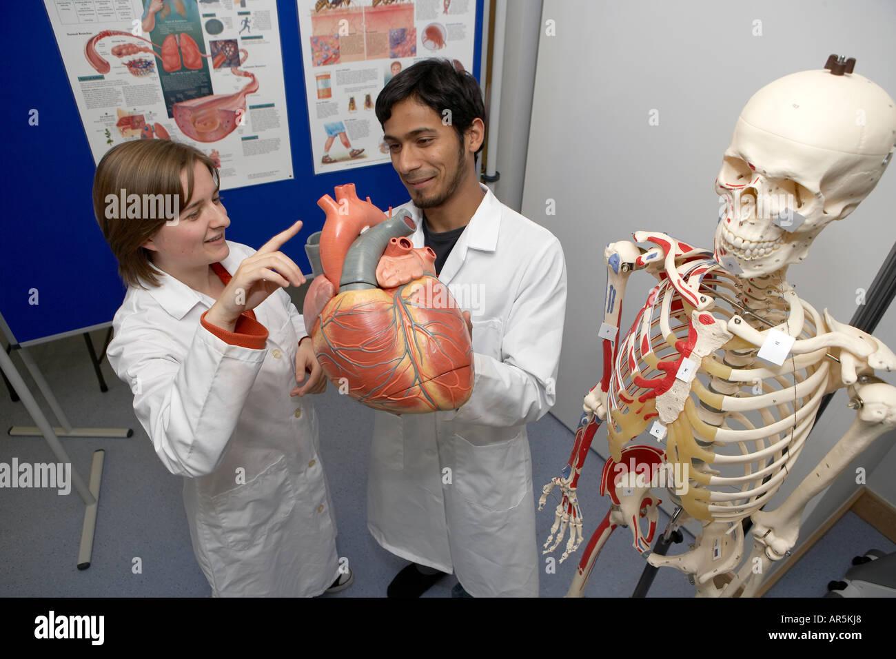 Studierende der Medizin Studium an der Hull York Medical School ...