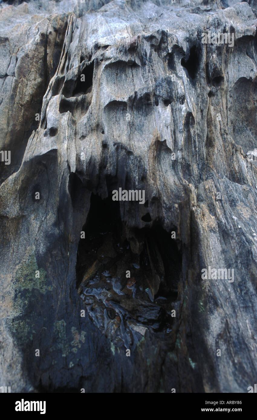 Ein Felsen, der aussieht wie ein versteinertes schreienden Dämon aus der Hölle, Cap de Creus, Katalonien, Spanien Stockbild