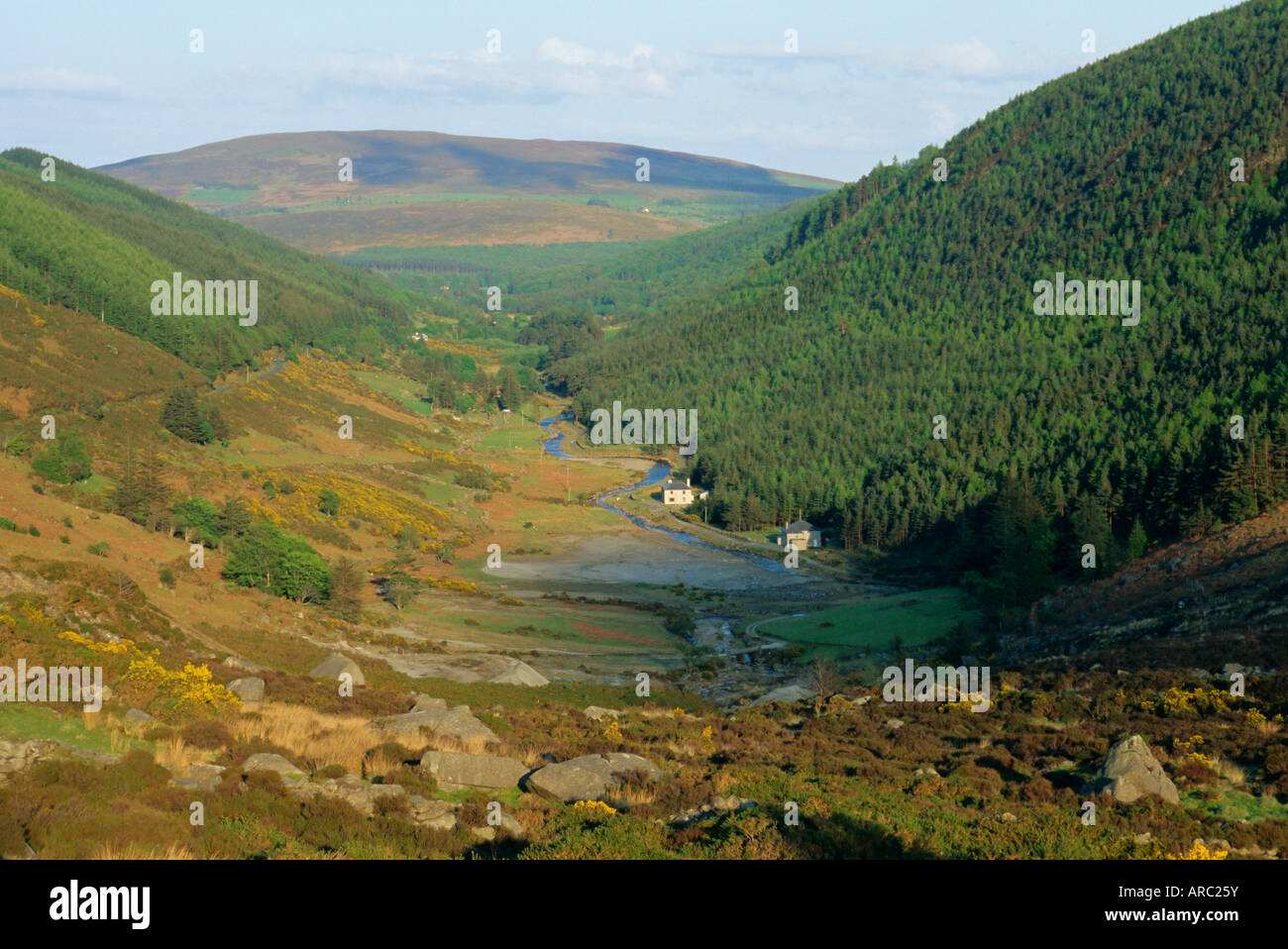 Ein Tal in der Nähe von Glendalough, Wicklow Mountains, County Wicklow, Leinster, Irland (Eire) Europa anzeigen Stockbild