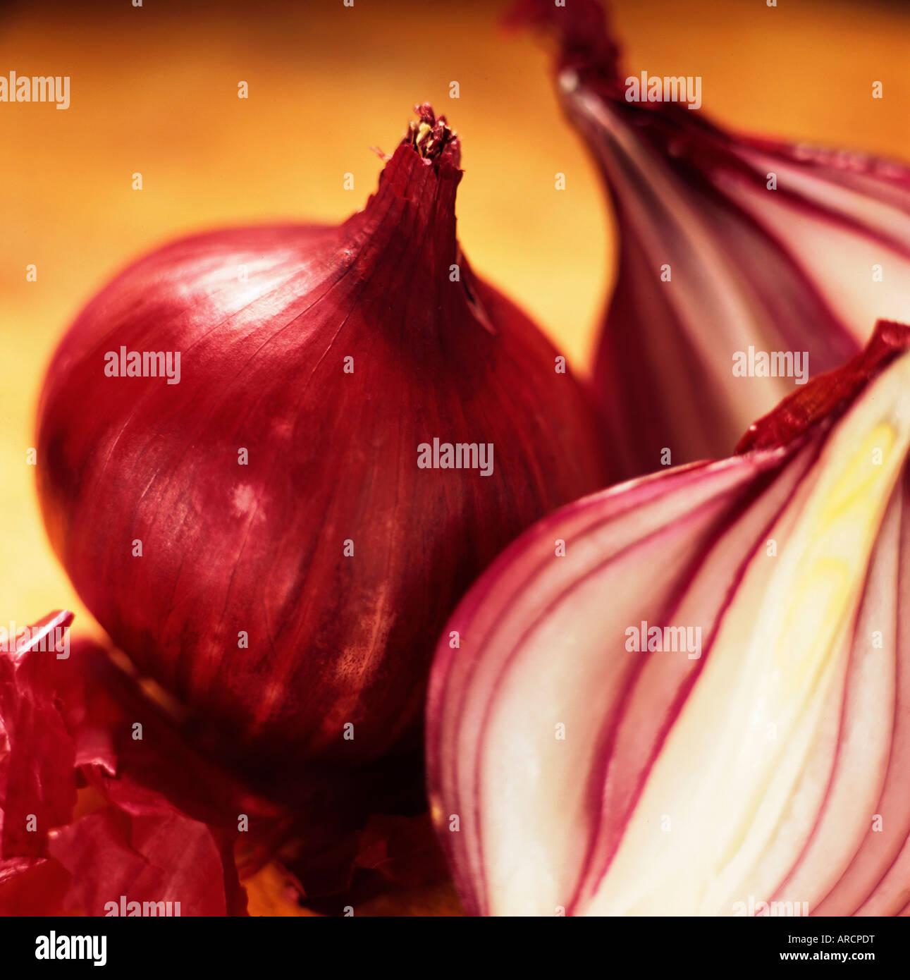Studioaufnahme von roten Zwiebeln Stockfoto