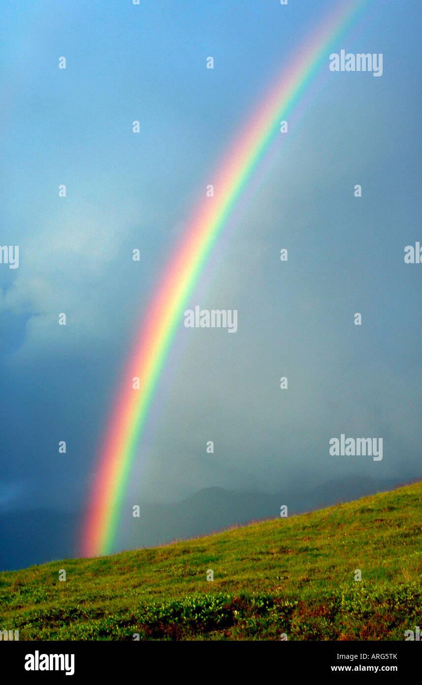 Über die arktischen Tundra im Denali-Nationalpark Alaska wölbt sich ein Regenbogen Stockbild