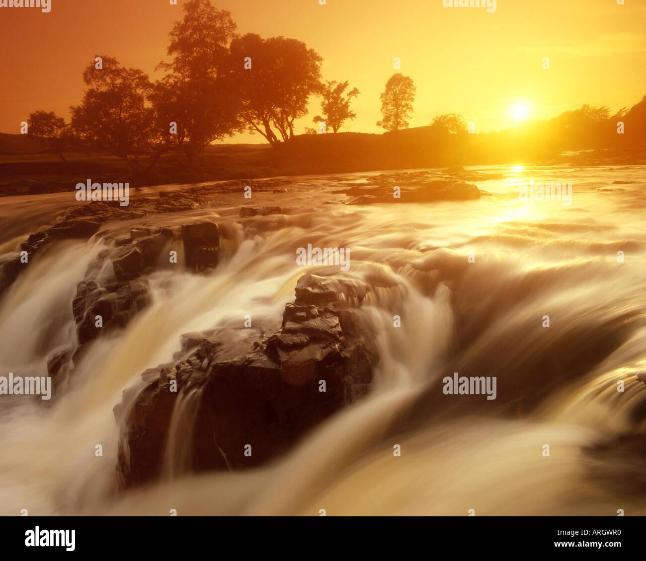 GB - CO. DURHAM: Low Force Wasserfälle in der Nähe von Middleton in Teesdale Stockfoto