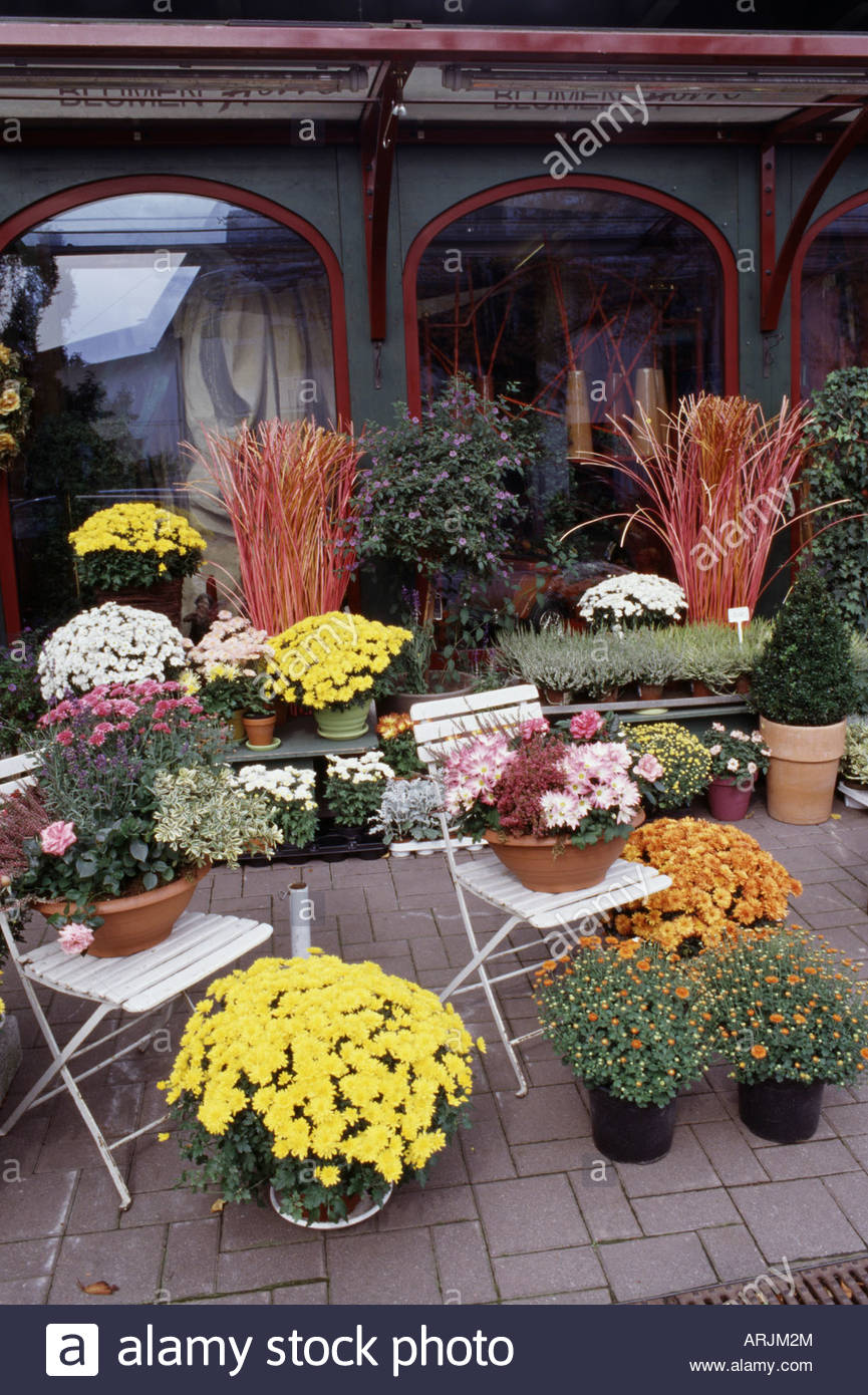 Flower Shop Austria Stockfotos Flower Shop Austria Bilder Alamy