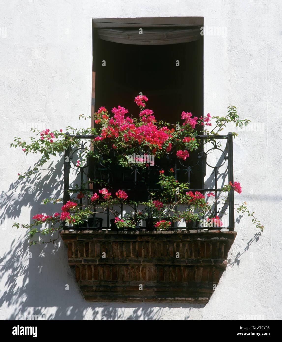 Fenster-Box in der kolonialen Stadt Santo Domingo, Dominikanische Republik, Caribbean Stockbild