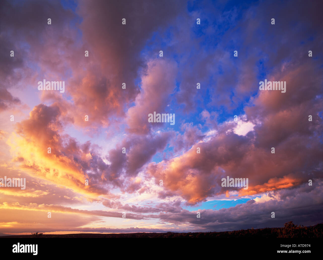 Sonnenuntergang Wolken mit Schattierungen von gelb rosa und orange Streifen über einem weiten blauen Himmel Stockbild