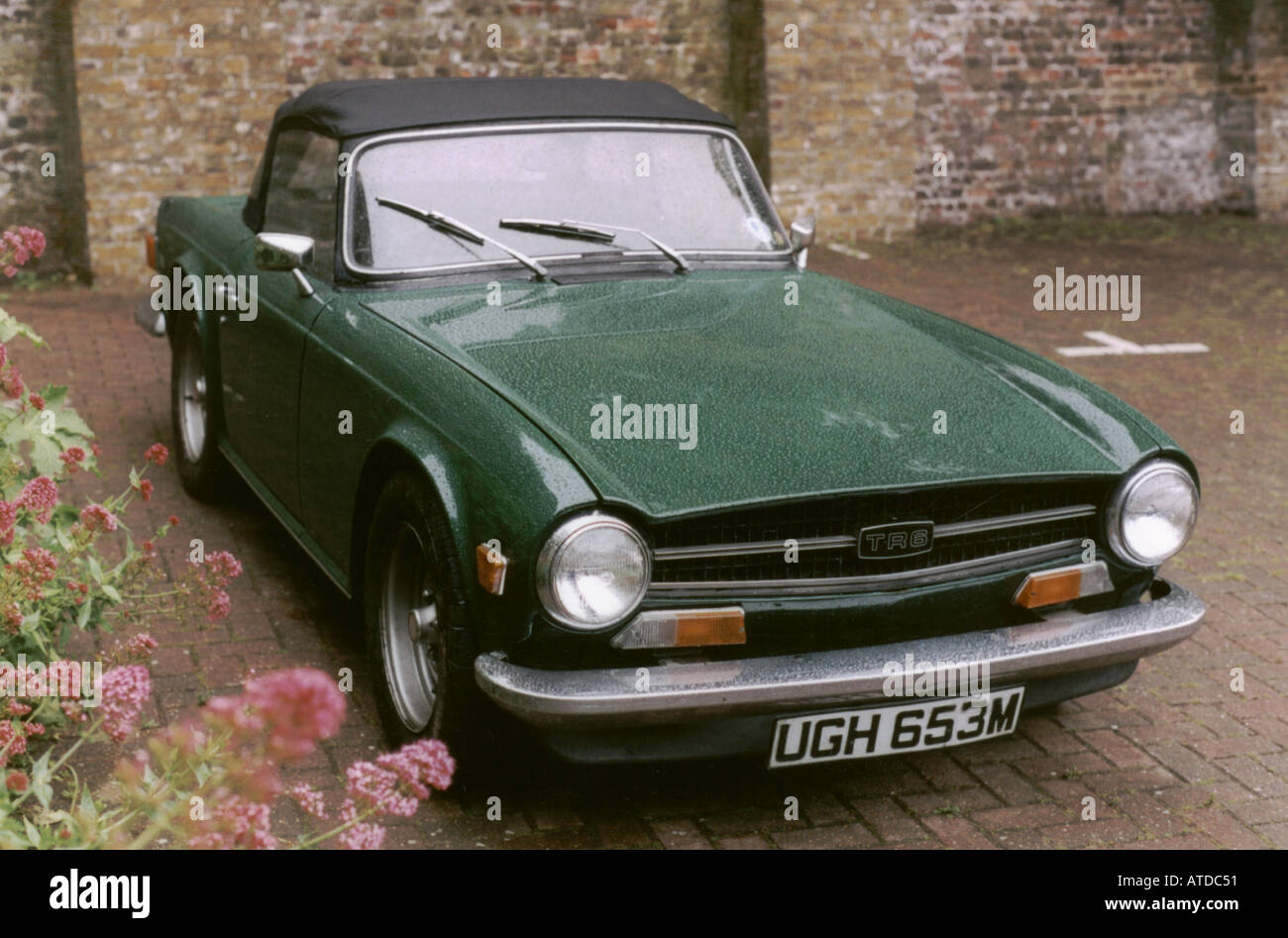 triumph tr6 in british racing gr n vorderansicht. Black Bedroom Furniture Sets. Home Design Ideas