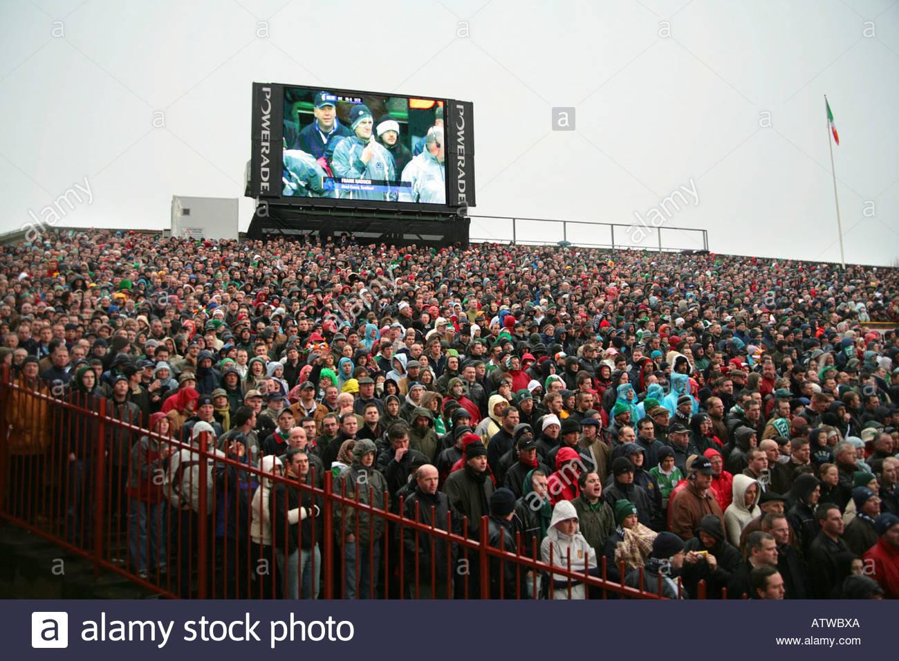 Rugby-Publikum Stockbild