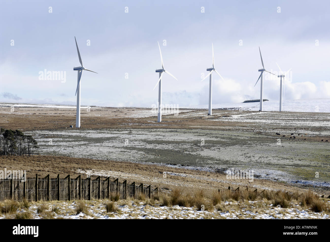 Windfarm grüne Energie Produktion Windkraftanlagen schottischen grenzt an Schottland Stockfoto