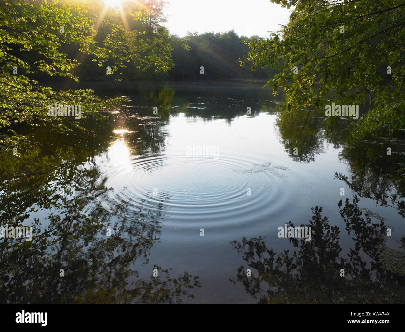 Rätsel auf einem See. Stockbild