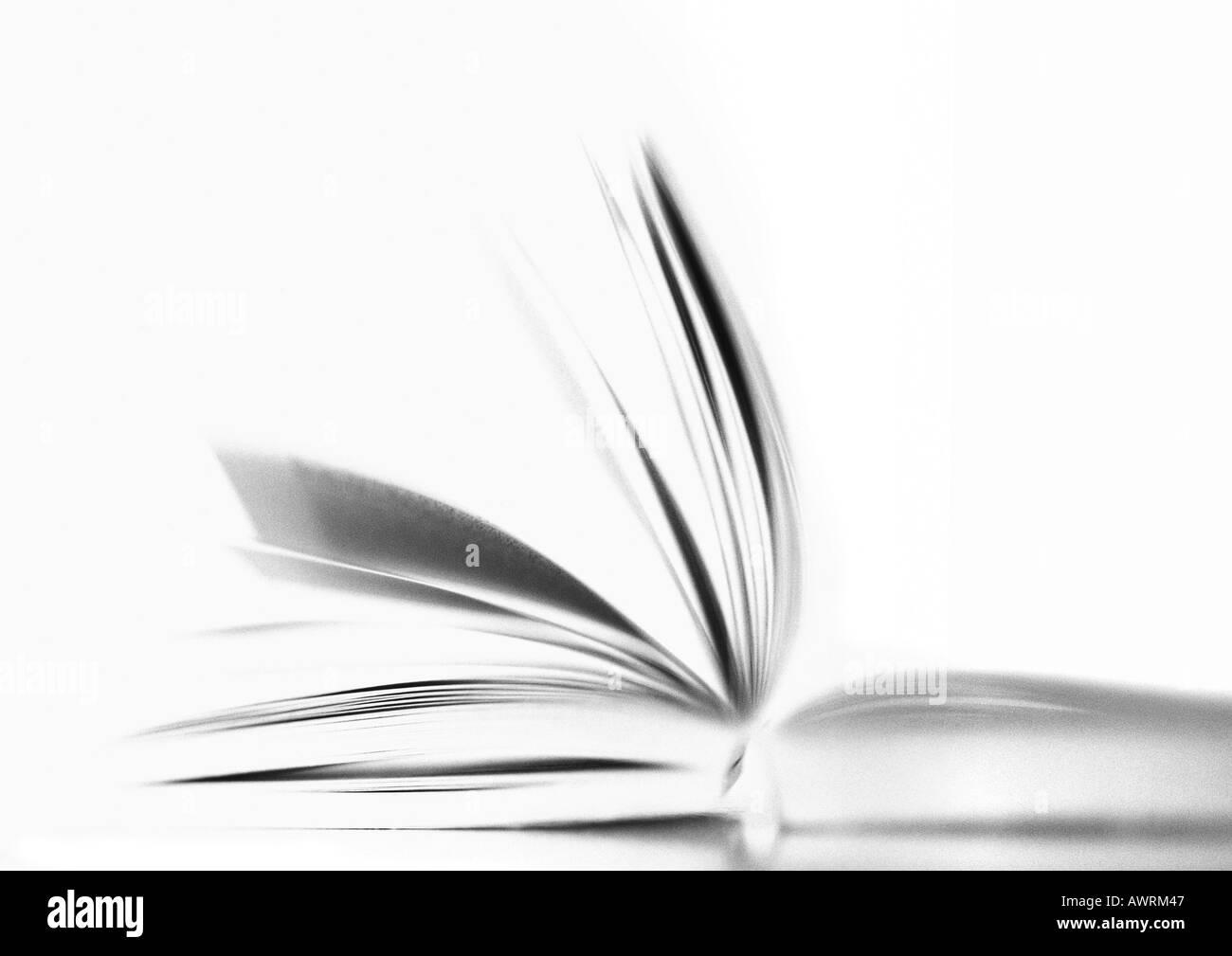Offenes Buch, b&w. Stockbild