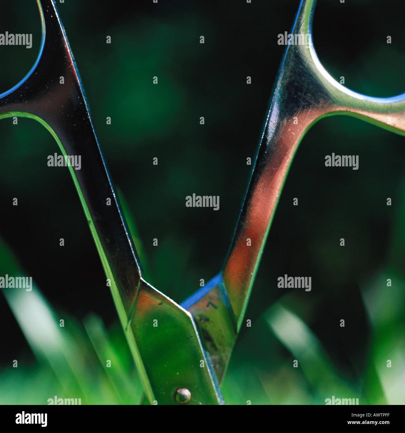Schere stecken in Rasen, Nahaufnahme Stockbild