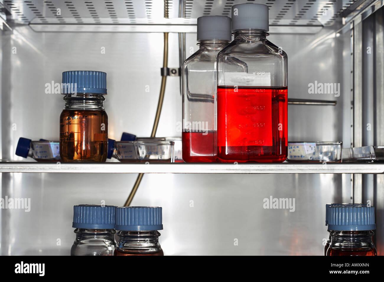 Kühlschrank Regal : Flaschen und behälter im labor kühlschrank regal nahaufnahme