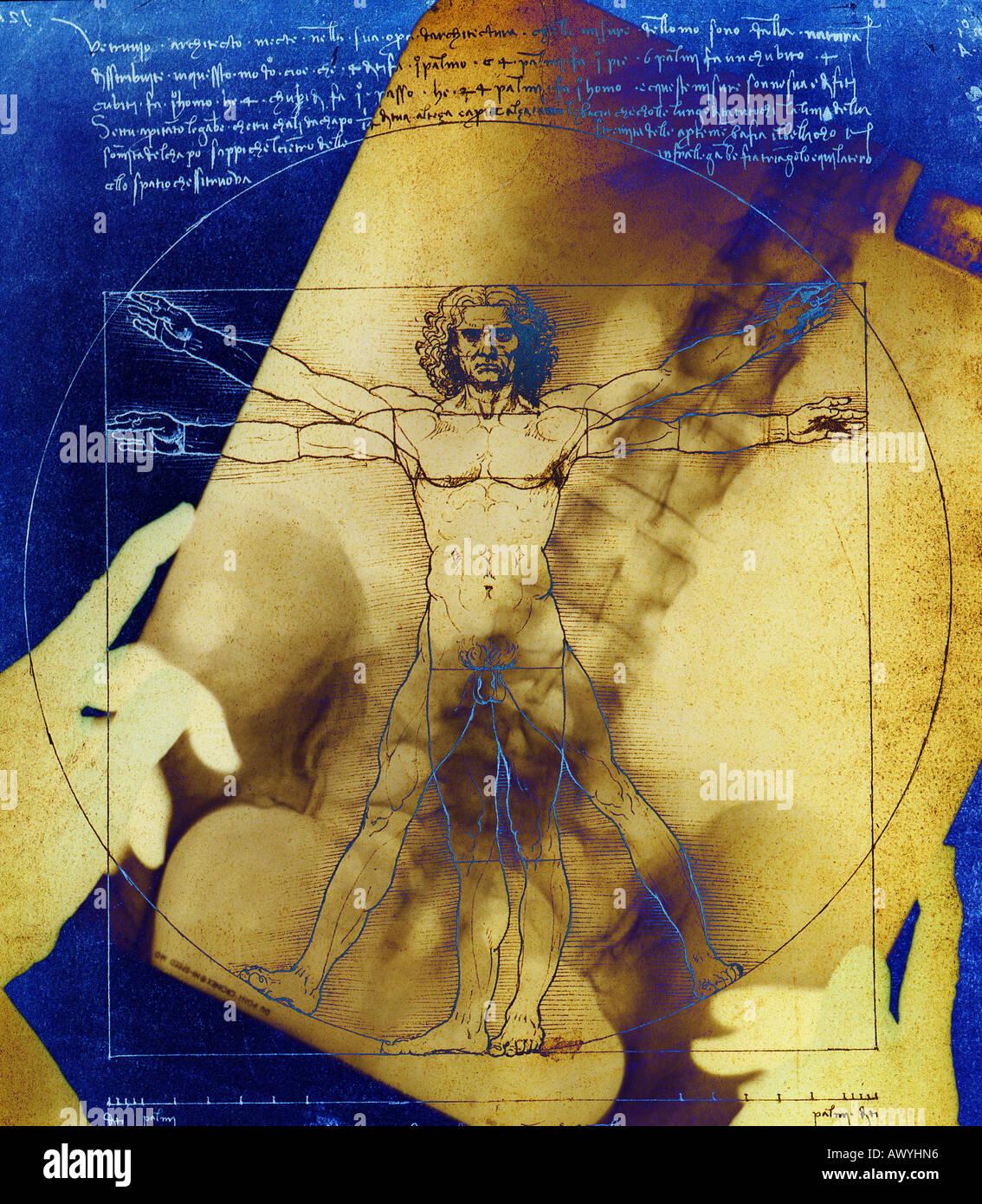 Ärztin mit Röntgen über ein Poster der vitruvianische Mensch Skizze ...