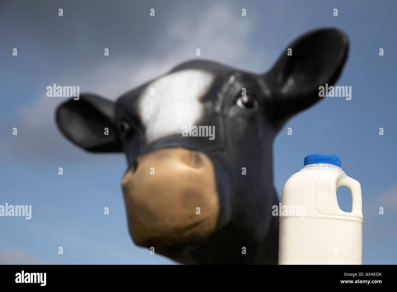 Pint Milch in einem Kunststoff Karton vor Nachahmung Kuh Fiberglas für Bildungszwecke genutzt, um Kinder zu Stockbild
