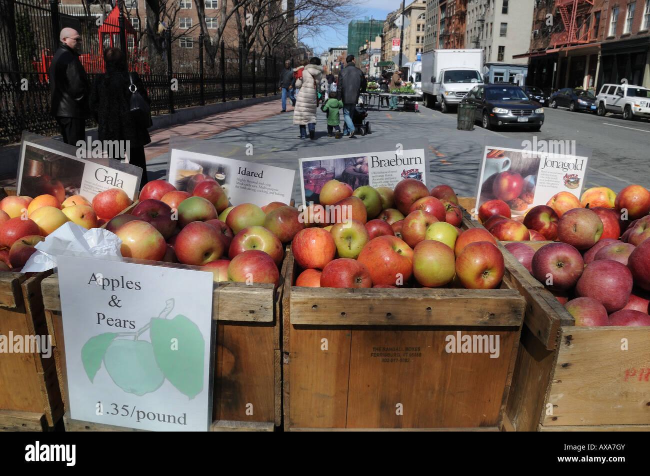 Äpfel in einen Bauernmarkt im Stadtteil Tribeca, von Manhattan zu verkaufen. Stockbild