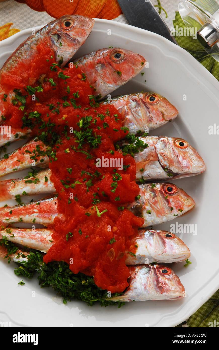 Meeräsche mit Tomaten-sauce - Triglie in Rosso - toskanischen Rezept ...