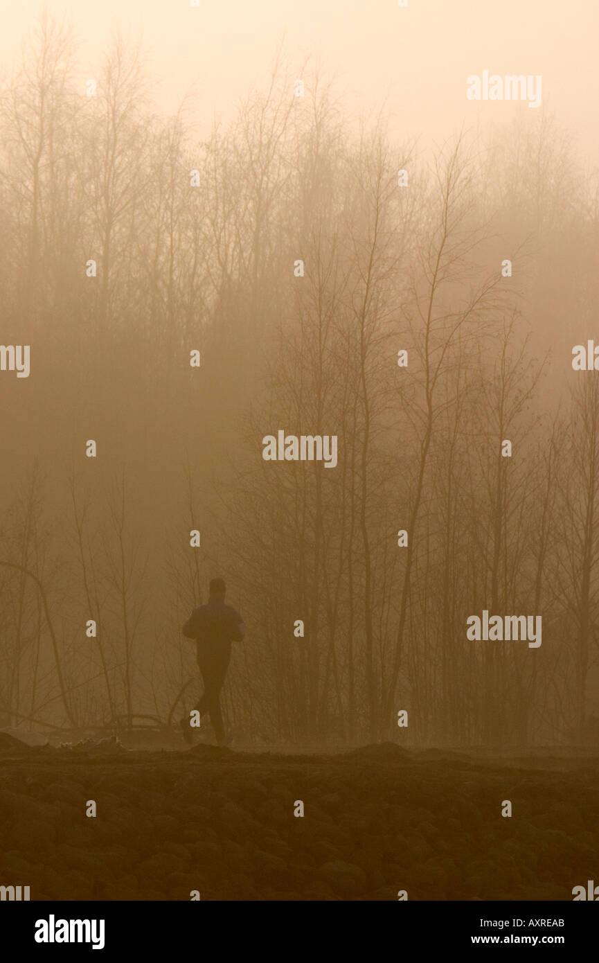 Läufer laufen im Wald im Morgennebel, Finnland Stockbild