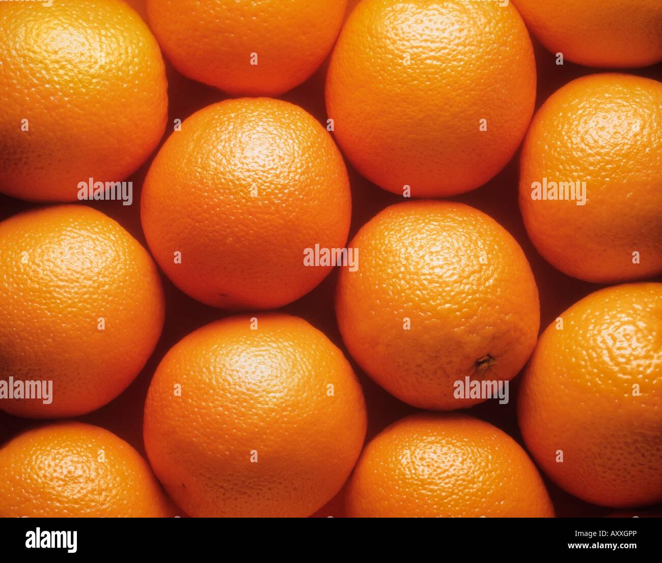 Orange, Citrus Sinensis, Orange, Zitrone, sinensis Stockbild