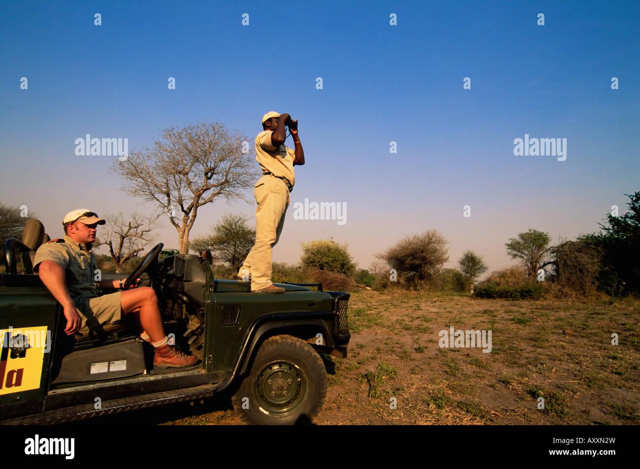 Auf der Suche nach Wildtieren, Mala Mala Game Reserve, Sabi Sand Park, Südafrika, Afrika Stockbild