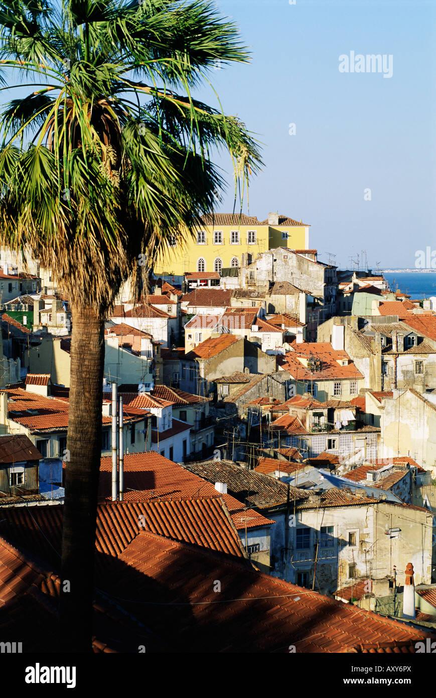 Blick auf den Stadtteil Alfama und den Tejo, Lissabon, Portugal, Europa Stockbild