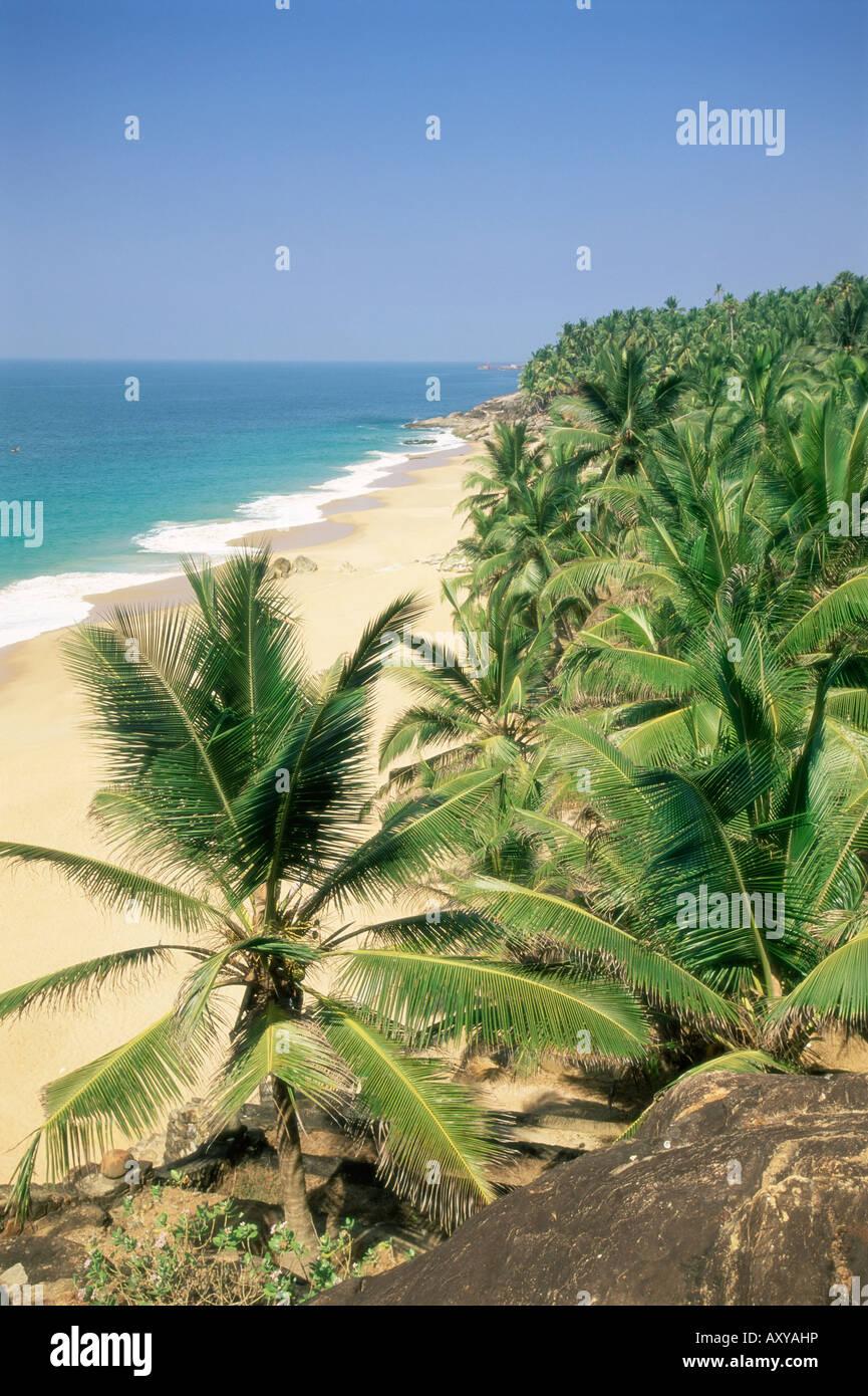 Kokos-Palmen und Strand, Kovalam, Kerala Zustand, Indien, Asien Stockbild