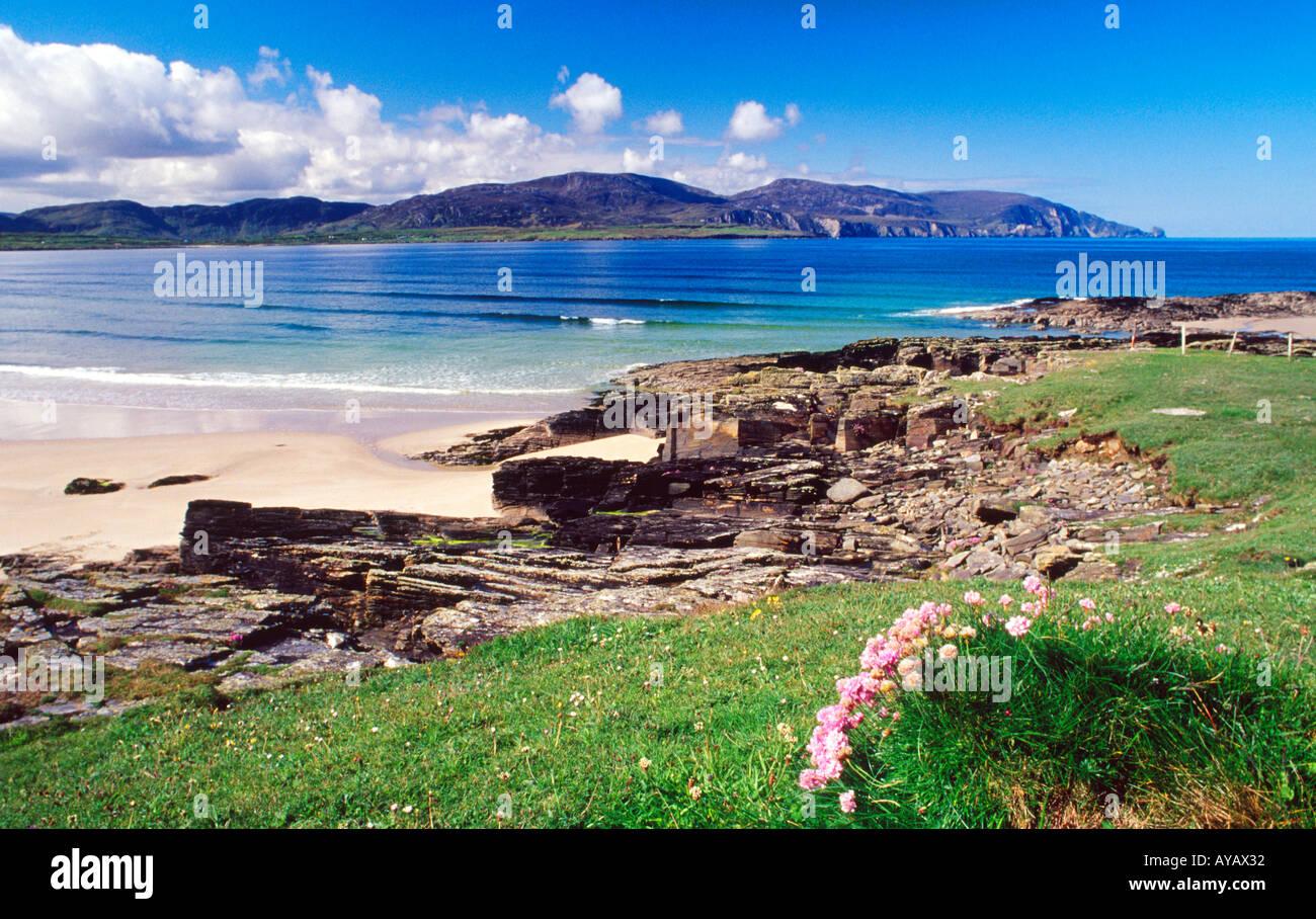 Sparsamkeit und Felsen neben Strand, Rosbeg Tramore, County Donegal, Irland. Stockbild
