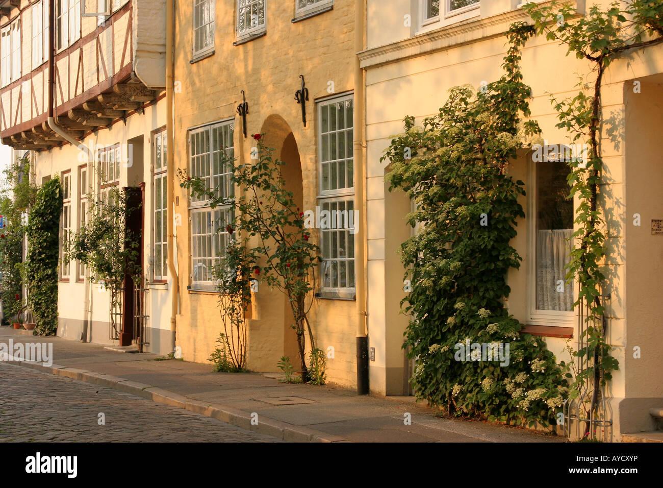 Grüne Fassaden in der alten Stadt Lübeck-Deutschland Stockbild