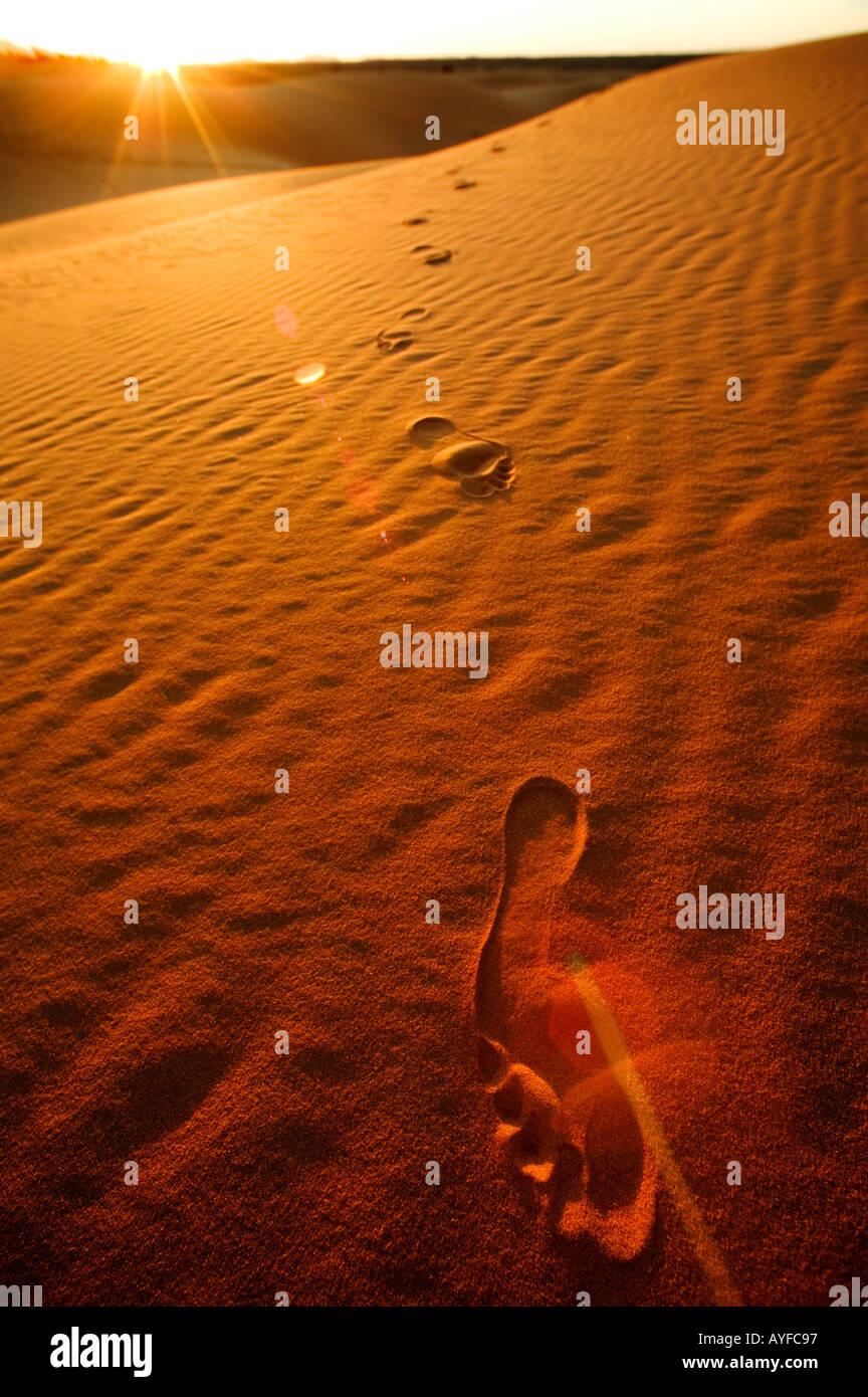 Tourismus-Fußspuren in den Sanddünen des Erg Chebbi Bereich Sahara Wüste Marokko Stockbild