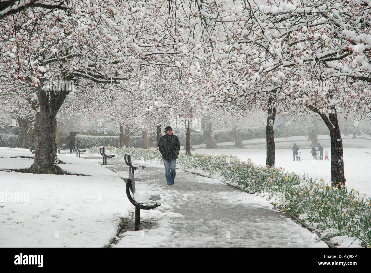 Schneebedeckten Park Hill, Croydon, Surrey, UK Stockbild