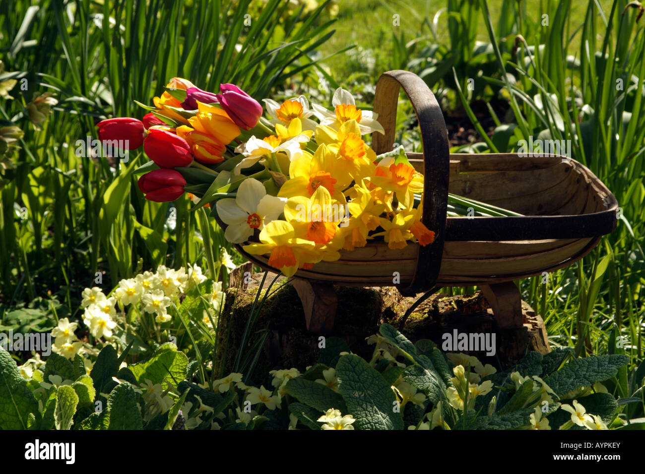 english country garden stockfotos english country garden bilder alamy. Black Bedroom Furniture Sets. Home Design Ideas
