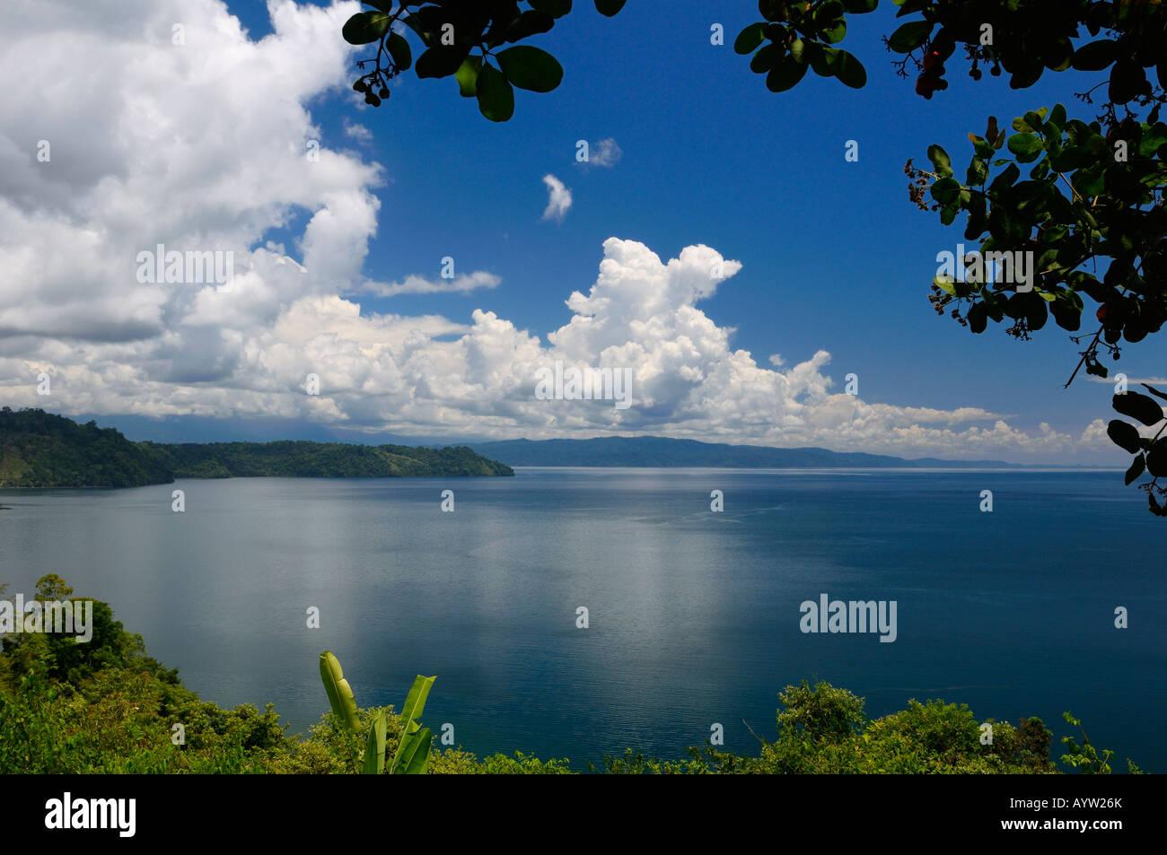 Blaue ruhigen Wasser des isolierten Golfo Dulce am Halbinsel Osa Costa Rica unter einem Cashew-Baum Stockbild