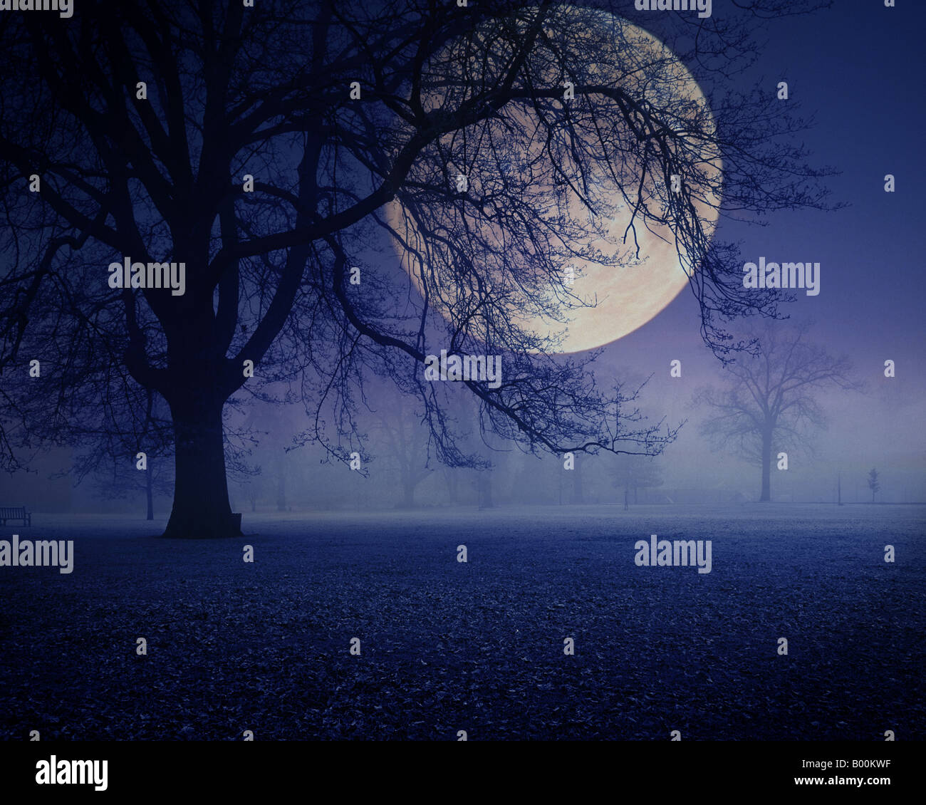 GB - GLOUCESTERSHIRE: Mondnacht in Cheltenham Pittville Park Stockbild