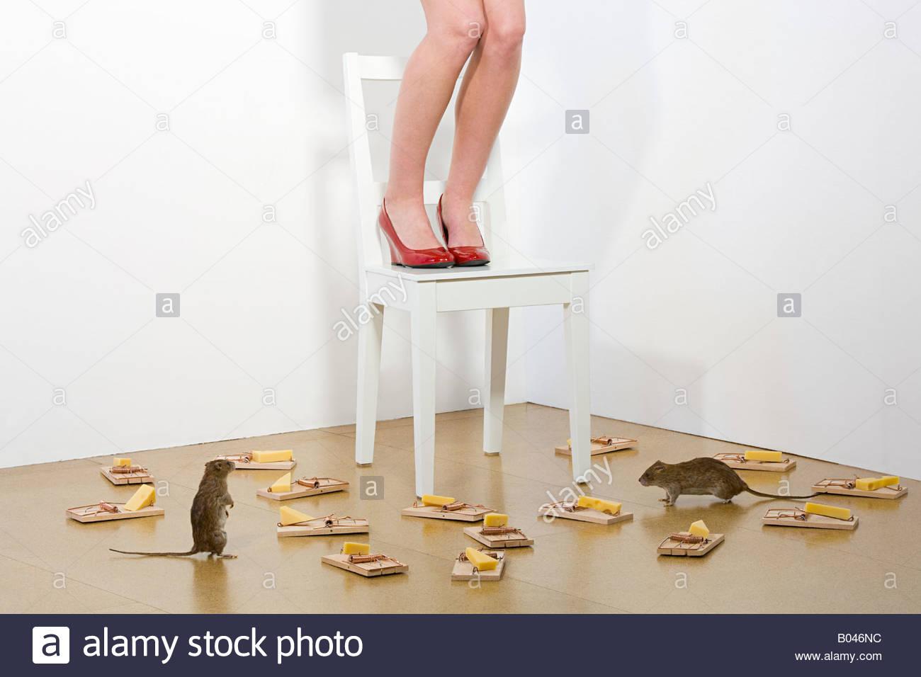 Frau Angst vor Ratten Stockbild