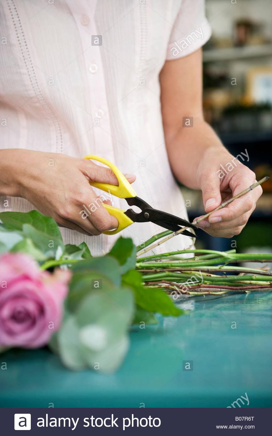 Frauenhand zusammenbinden ein Bouquet von rosa und weißen Rosen Stockbild