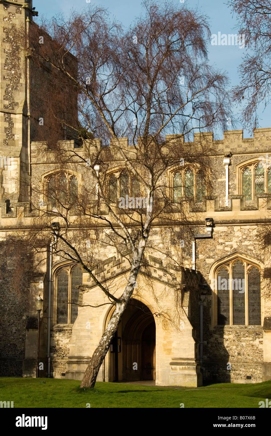 Kirche St. Peter und St. Paul, Tring, Hertfordshire, England, Vereinigtes Königreich Stockbild