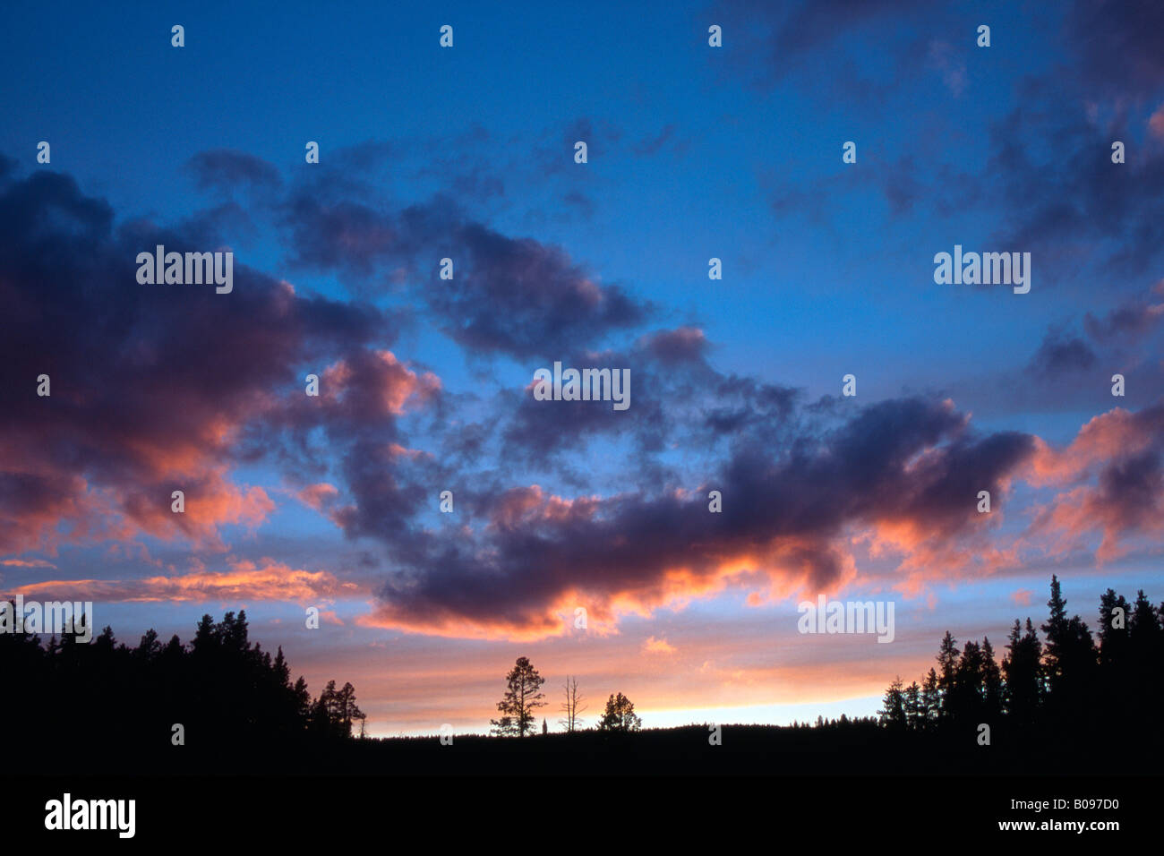 Dramatische Wolken bei Sonnenuntergang über Pinien und Wälder, Tirol, Österreich Stockbild