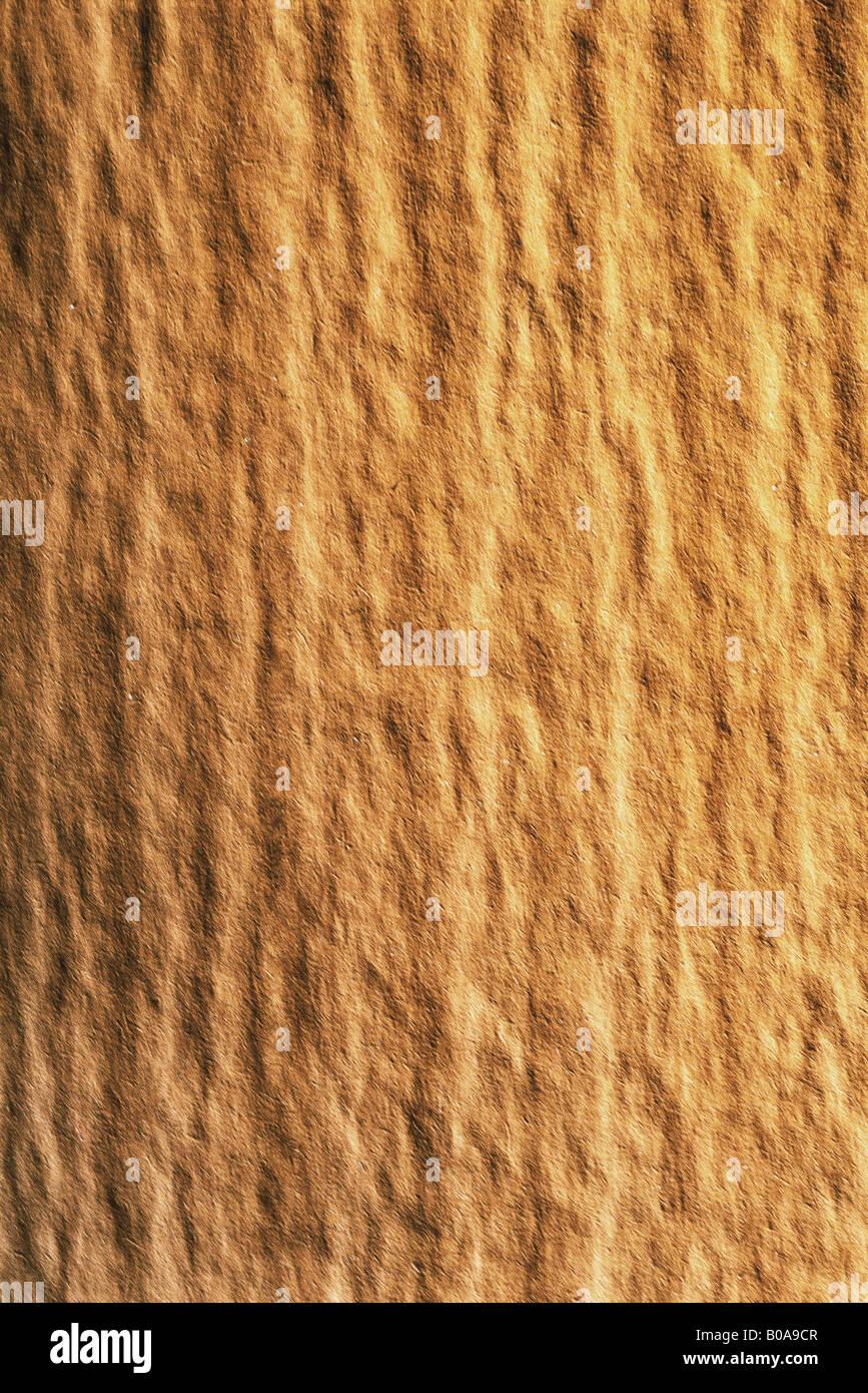 Unebene Oberfläche, Nahaufnahme, full-frame Stockfoto