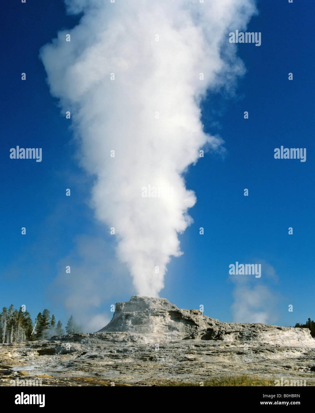 Dampf steigt von Castle-Geysir, Yellowstone-Nationalpark, Rocky Mountains, Wyoming, USA Stockbild