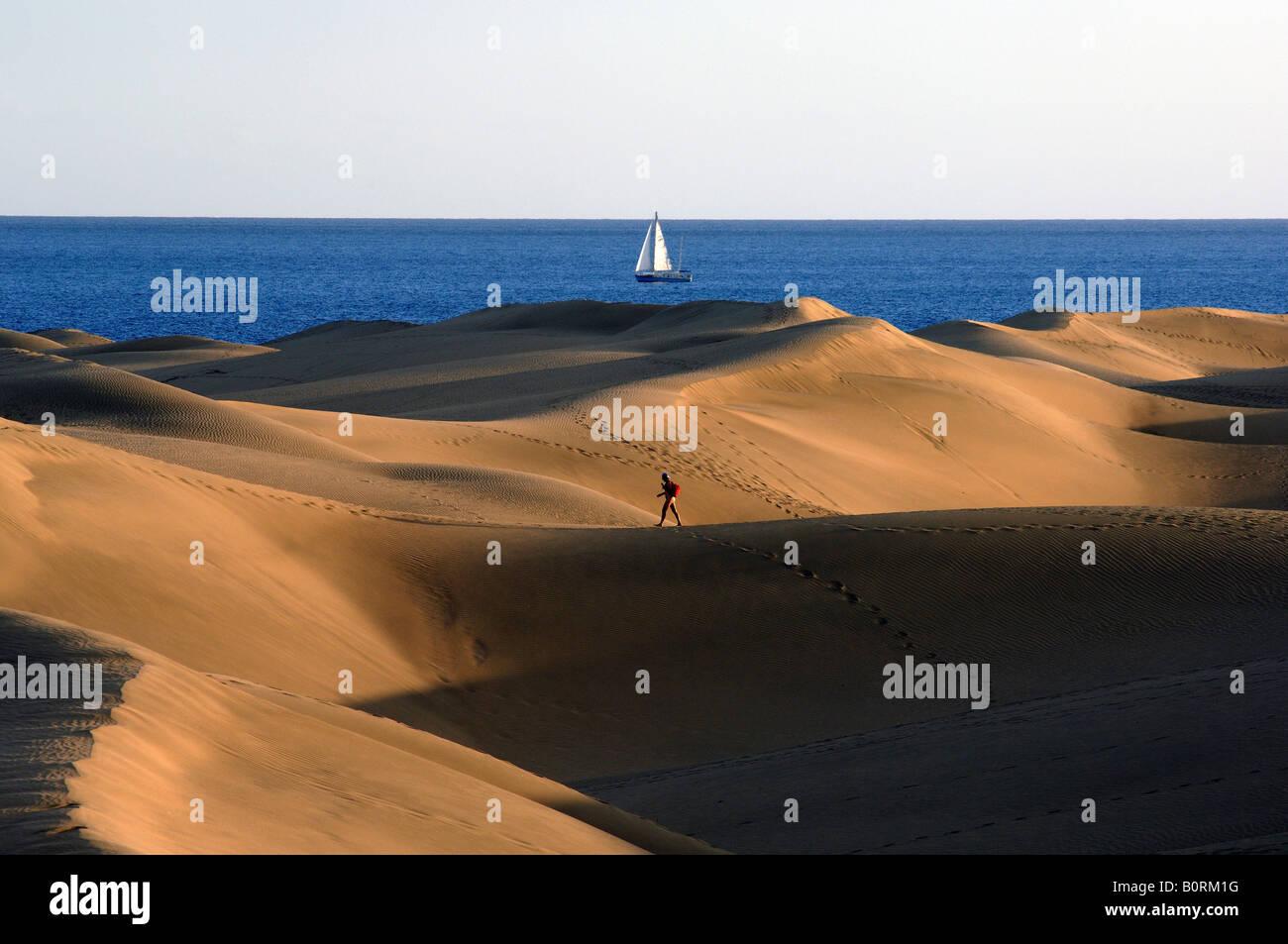 Oasis de Maspalomas Gran Canaria Playa del Ingles Stockbild