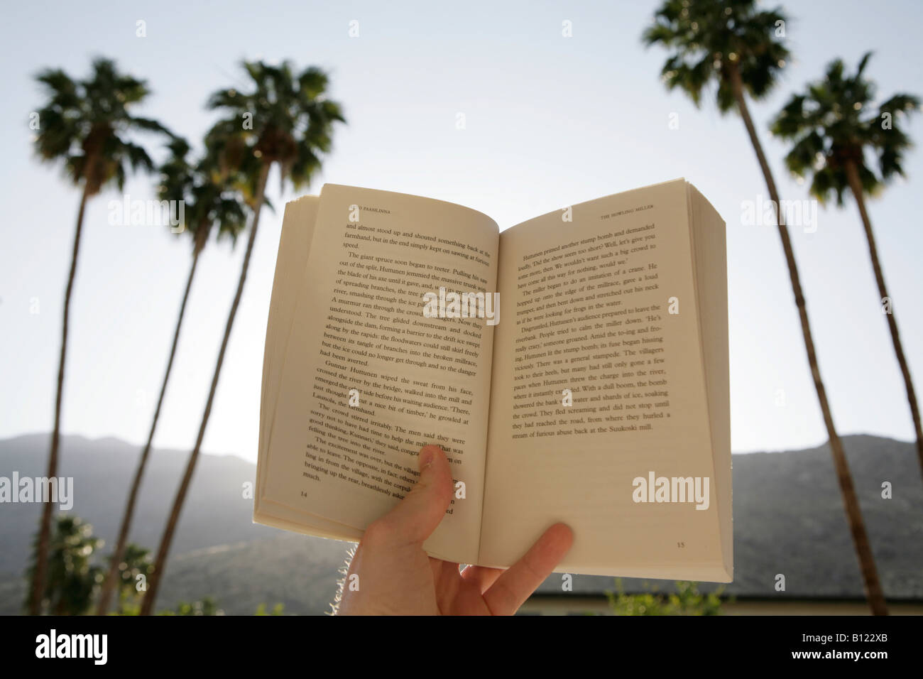 Lesen Sie ein Buch in den Urlaub - Palmen hinter. Stockbild