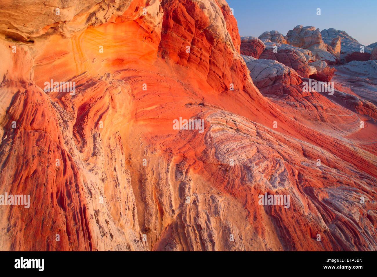 """Sandstein Wirbel bei 'White Pocket""""im Vermilion Cliffs National Monument, Arizona Stockbild"""