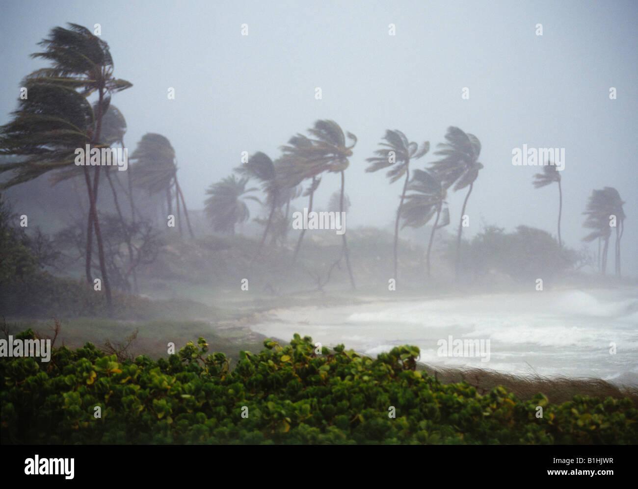 Hurrikan Winde Antigua, West Indies Stockbild