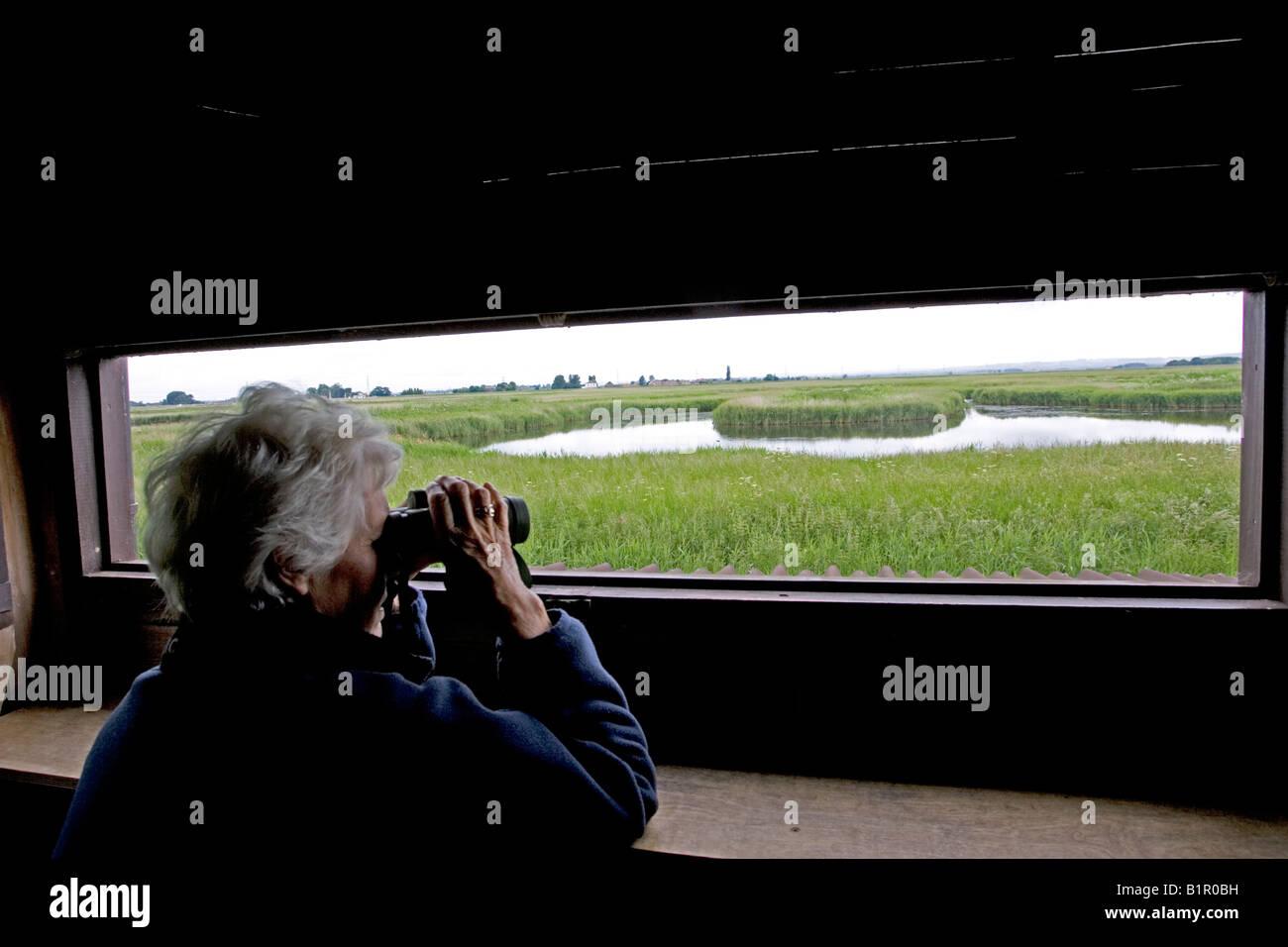 Vogelbeobachtung vom ausblenden RSPB Vogelschutzgebiet Freiston Shore Lincolnshire UK Stockbild