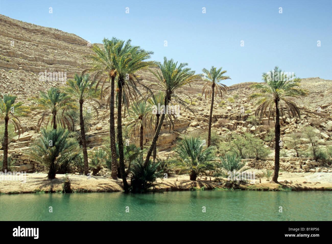 Wadi in einer felsigen Landschaft im Hadjar-Gebirge, Oman, Arabische Halbinsel, Naher Osten Stockbild