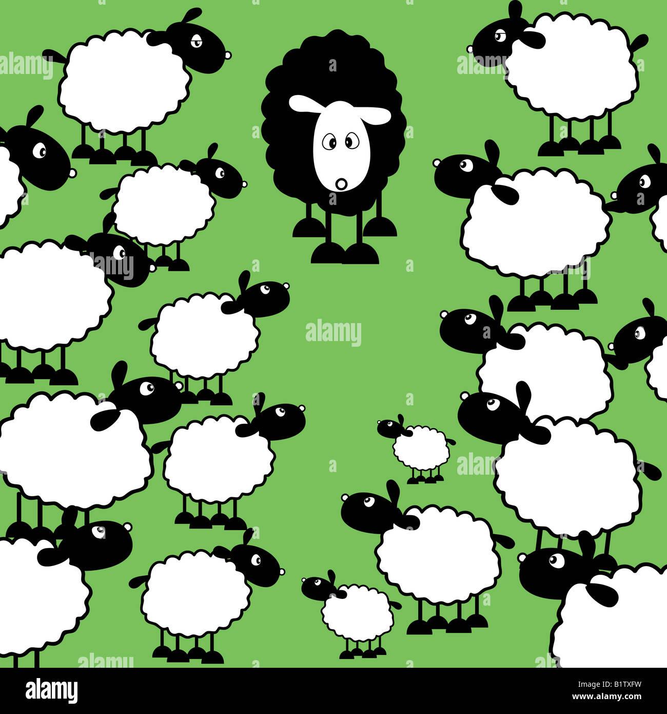 Ein schwarzes Schaf unter viele weiße Schafe Stockbild