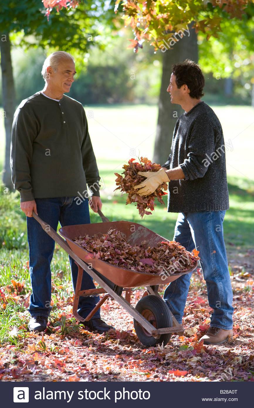 Männer, die Gartenarbeit im Herbst Stockbild