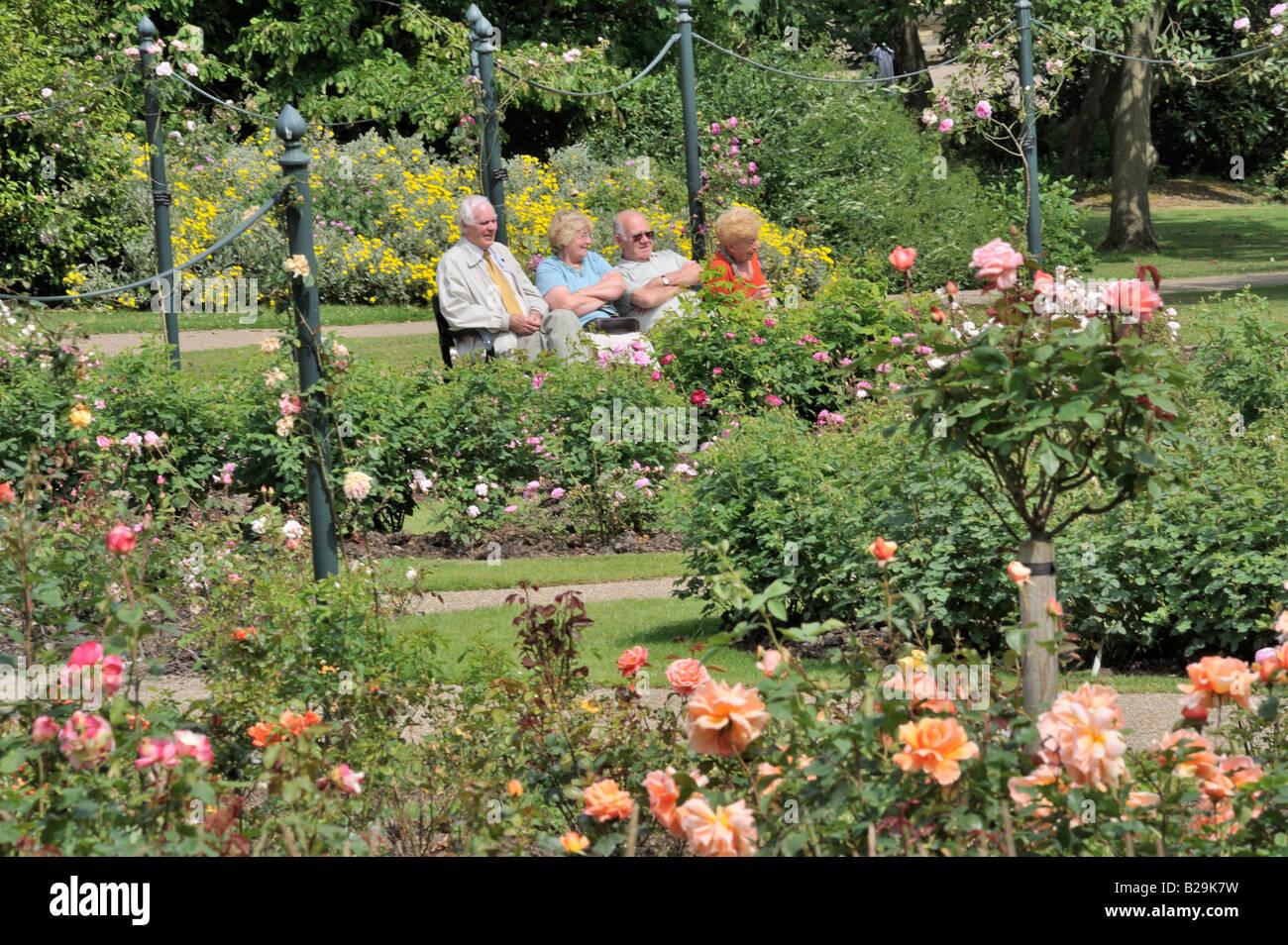Menschen In den Park: Menschen im Park: Eine Gruppe älterer Menschen, die auf einer Bank sitzend bewundern die Rosengärten Stockfoto