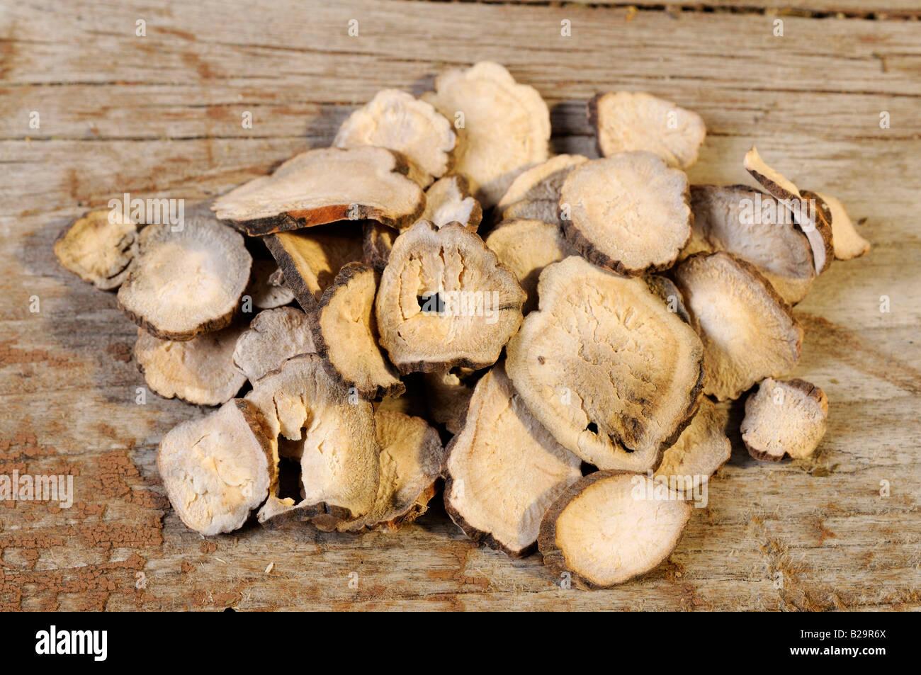 Roten Paeony Root / Chi Shao Stockfoto